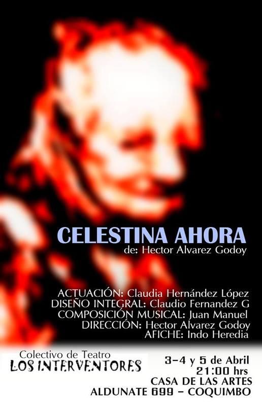 Representación de la Casa de las Artes, Coquimbo, Chile, 2014<br />