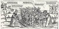The Fools' Cage (La jaula de los necios), engraving by Schoen (XVI century).