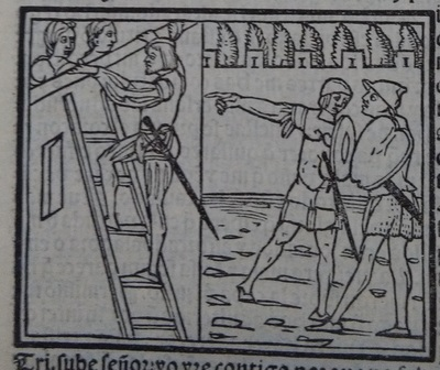 Image of act 14 of the edition of Lisbon (1540)