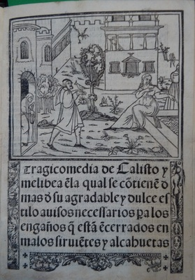Cover of the edition of Lisbon (1540)